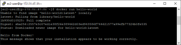 "Confirm that the Docker ""hello world"" container runs"